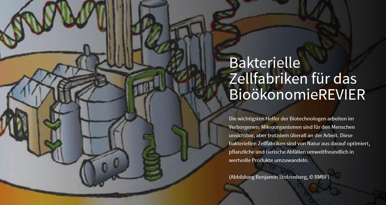 Scrolly-Telling Bakterielle Zellfabriken